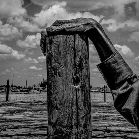 Photographie Männerhand auf Holzpfosten